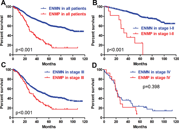 Prognosis of ENMN and ENMP groups in all patients, TNM I-II, III and IV stages.