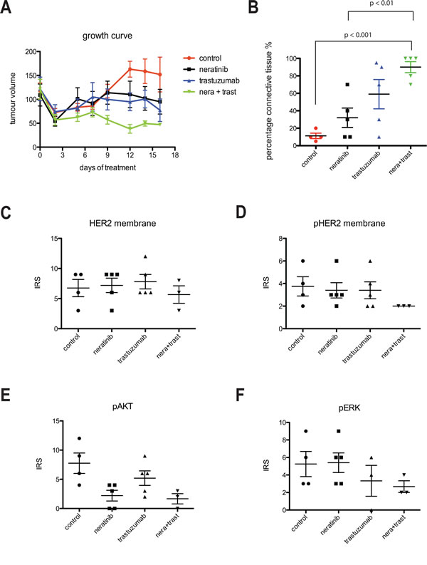 Combination of trastuzumab and neratinib was additive in tumor growth inhibition in BT474 xenograft model.