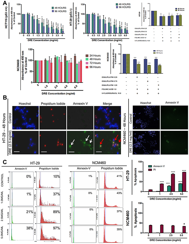 Dandelion root extract induces apoptosis in aggressive colorectal cancer cells.