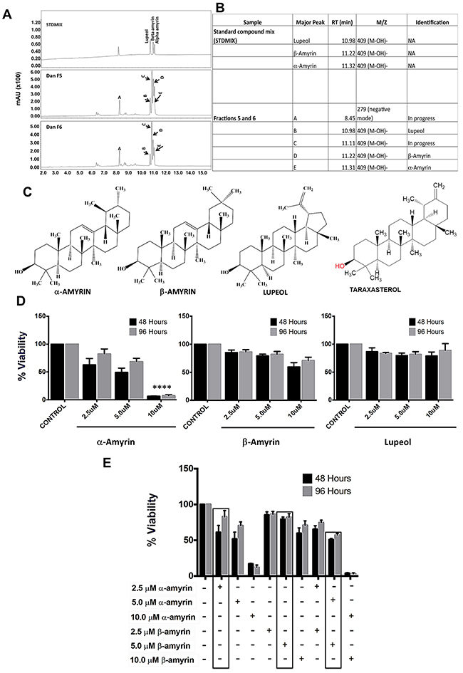 Identification of bioactive fractions & components within dandelion root extract.