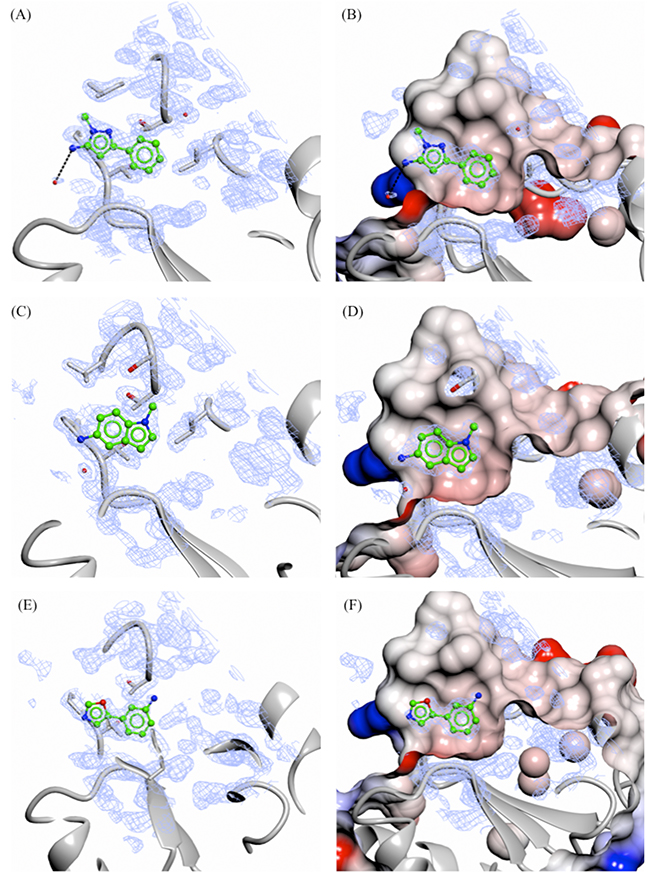 X-ray crystal structures of fragments not showing specific interactions bound to the adenine-subsite of PHGDH.