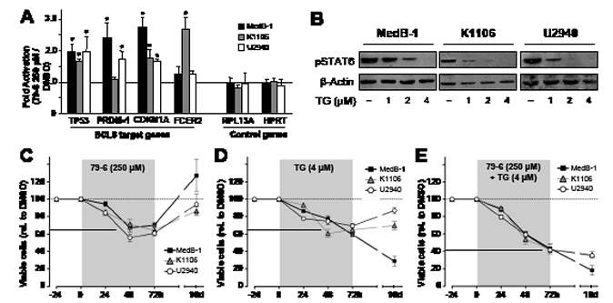 Combined treatment of PMBL cell lines with inhibitors against JAK2 (TG101348) and BCL6 (79-6) results in additive efficacy in cell viability assays.