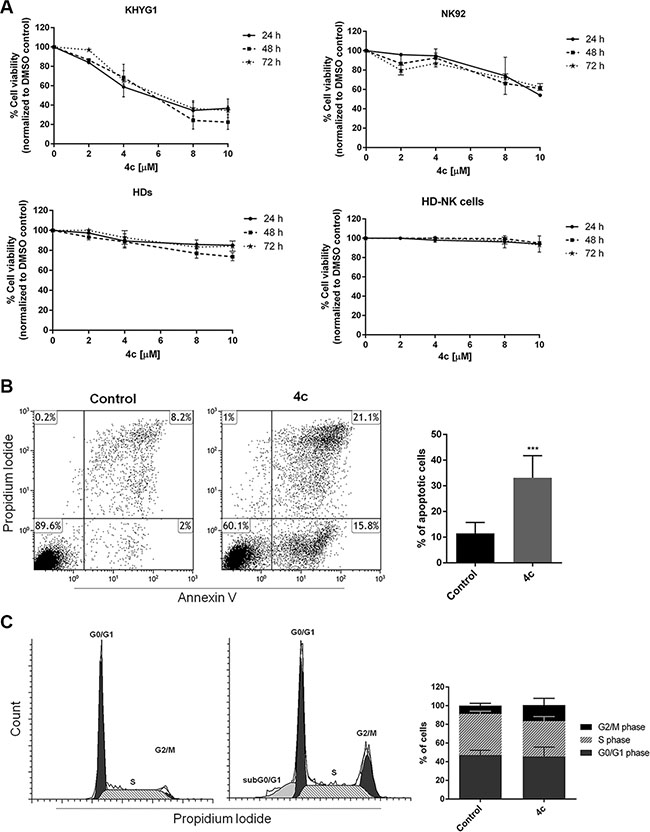 4c compound reduced cell viability inducing apoptosis and cell cycle arrest in NK leukemic cells.