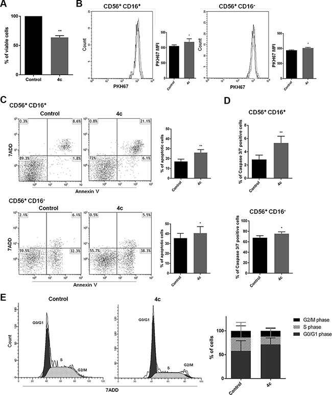 4c compound treatment reduced cell viability and proliferation, induced caspase 3-mediated apoptosis and cell cycle arrest in primary NK leukemic cells.