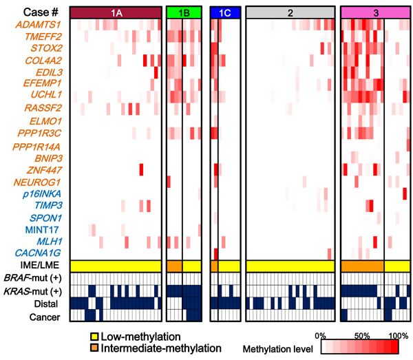 Methylation patterns of tumors in each patient.