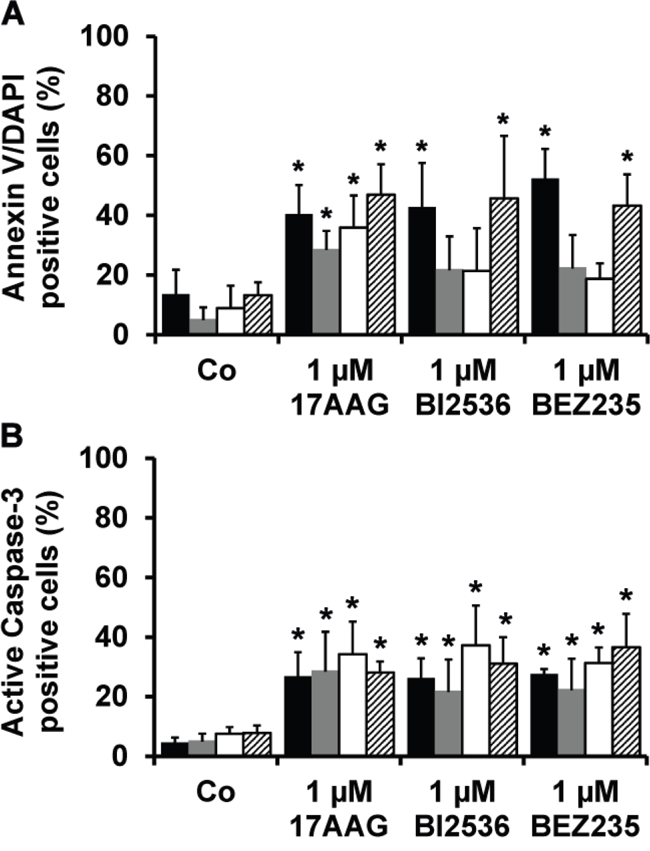 Effects of 17AAG, BI2536, and BEZ235 on survival of primary MM cells.