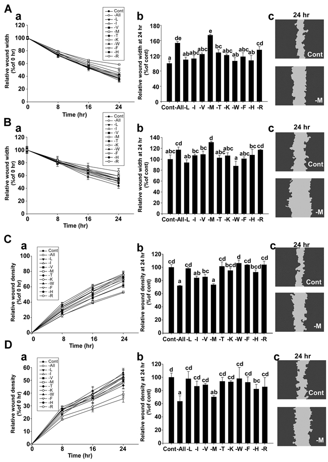 Effect of methionine deprivation on cell migration in MDA-MB-231 and Hs 578T cells.