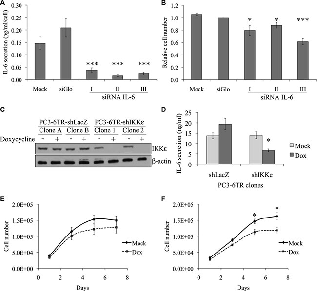 Effect of IKKε expression on IL-6 secretion and proliferation of prostate cancer cell lines.
