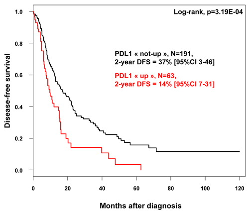 Disease-free survival according to PDL1 mRNA expression in patients with pancreatic cancer.