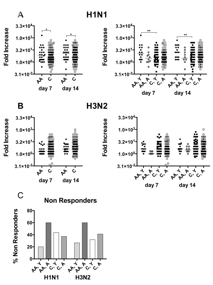 Virus neutralizing antibody responses.