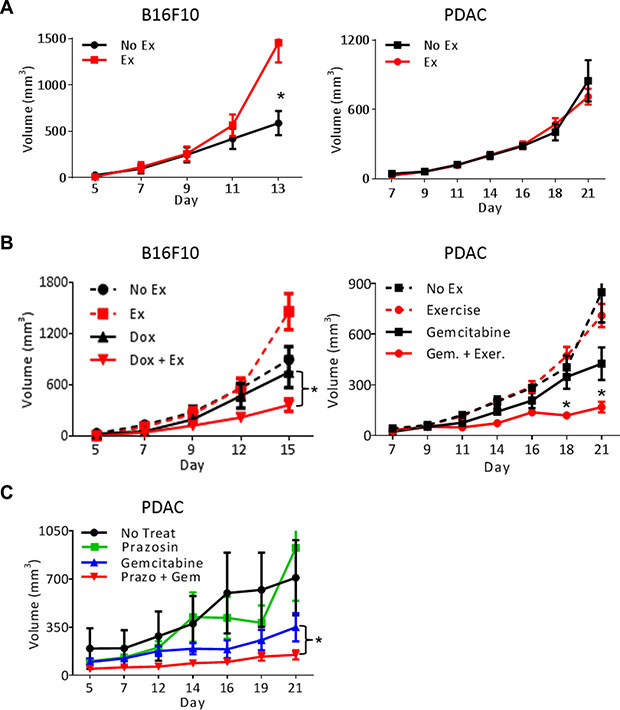 Exercise-induced shear stress increases chemotherapeutic efficacy.