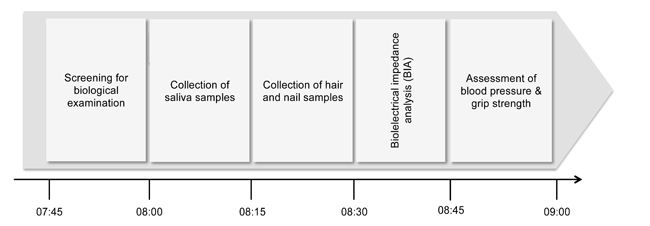 Timeline of the biological examination