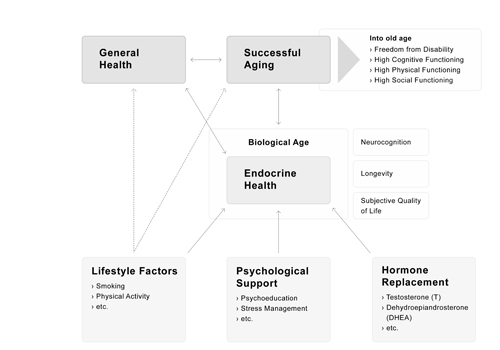A model of successful aging: Biological aging as main contributor of successful aging.