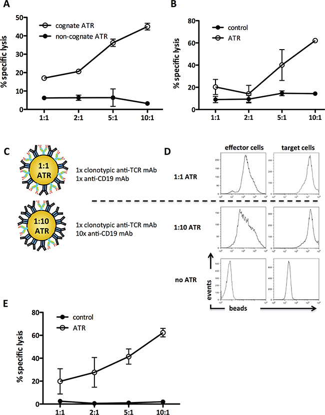 ATR redirect T cells to CD19+ tumor cells antigen-specific and variation of effector cell:target cell signal ratio increases ATR function.