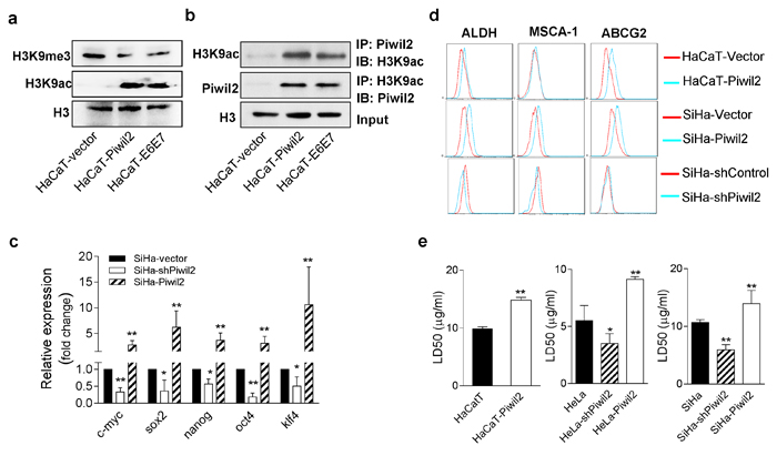 Piwil2 initiates cell reprogramming by regulating the balance between the acetylation and trimethylation of H3K9.