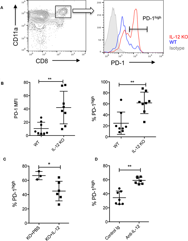IL-12 reduces PD-1 expression by tumor-reactive CD8+ T cells.
