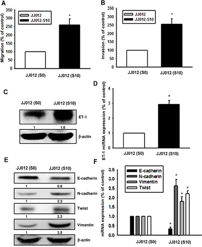 Upregulation of ET-1 and EMT in migration-prone chondrosarcoma cells.