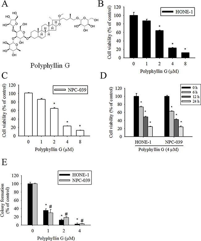 Polyphyllin G reduces cell viability in the dose- and time-dependent manners.