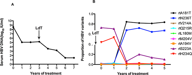 The dynamic changes in HBV DNA levels and resistance-associated variants in the RT domains during ADV+LdT treatment in patient 4.