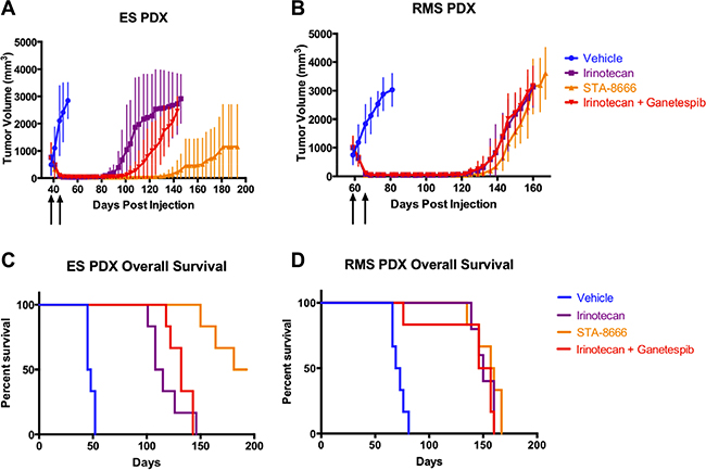 PDX tumor volumes and Kaplan-Meier curves for mice treated with vehicle, protracted-dose irinotecan, STA-8666, or ganetespib plus protracted-dose irinotecan.