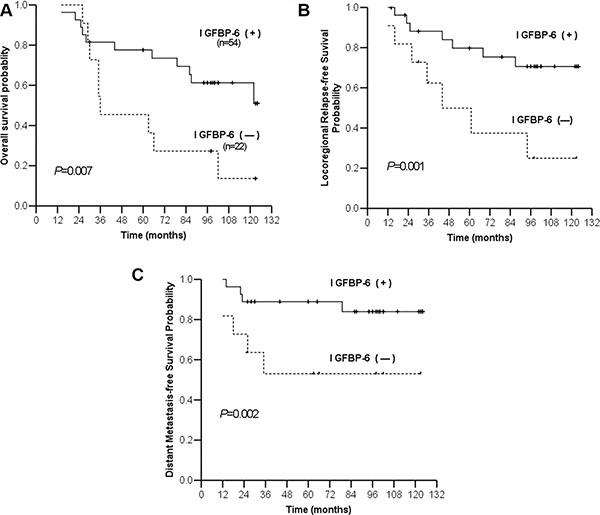 Kaplan-Meier estimates of survival curves for negative and positive IGFBP6 expression.