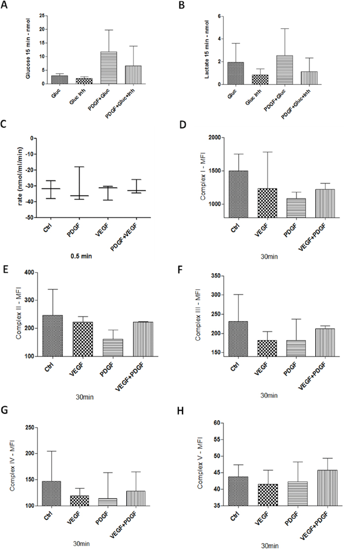 Glucose and Lactate measurement, Oxygen consumption, and mitochondrial complexes activity in HT29 cells.