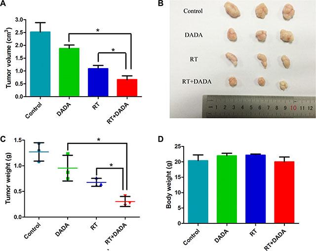 DADA sensitized ESCC cells to radiotherapy in vivo.