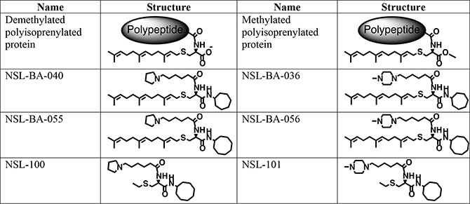 Shown are the chemical structures of the PCAIs and their non-farnesylated analogs in relation to the secondary modifications on polyisoprenylated proteins.