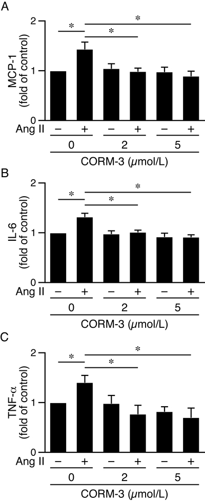 CORM-3 reduces angiotensin II-induced inflammatory cytokine productions in HO-1