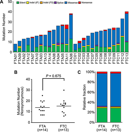 The mutational features of 27 thyroid follicular tumor genomes.