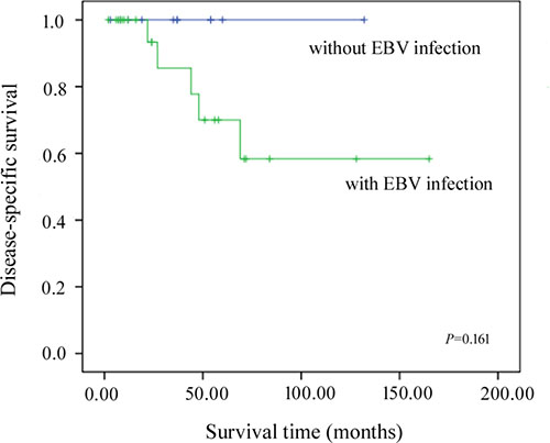 Kaplan-Meier disease-specific survival curves for patients with and without EBV infection.