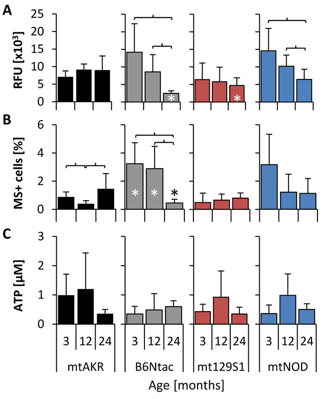Polymorphisms in mtDNA altered basal levels of ROS.