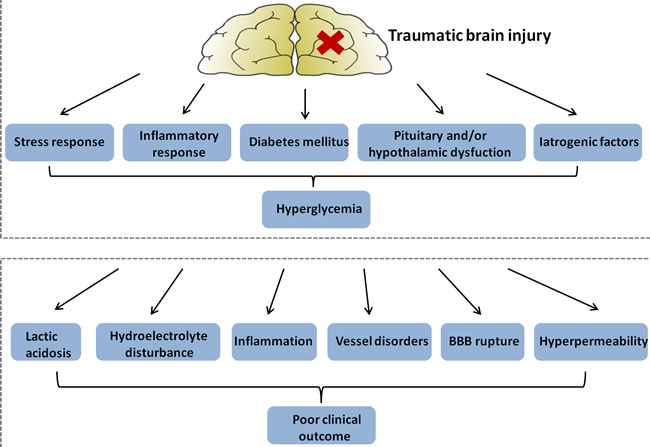 Figure illustrating hypothetical mechanisms: hyperglycemia in patients with traumatic brain injury (upper panel); and explaining a detrimental effect of hyperglycemia on clinical outcome (lower panel).
