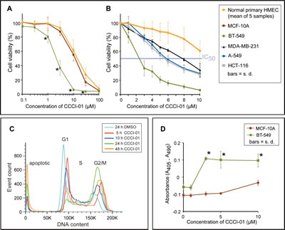Comparison of cytotoxicity of CCCI-01 in cancer cells and normal cells.