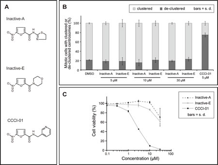 Analysis of inactive compounds structurally similar to CCCI-01, 02 and 03.