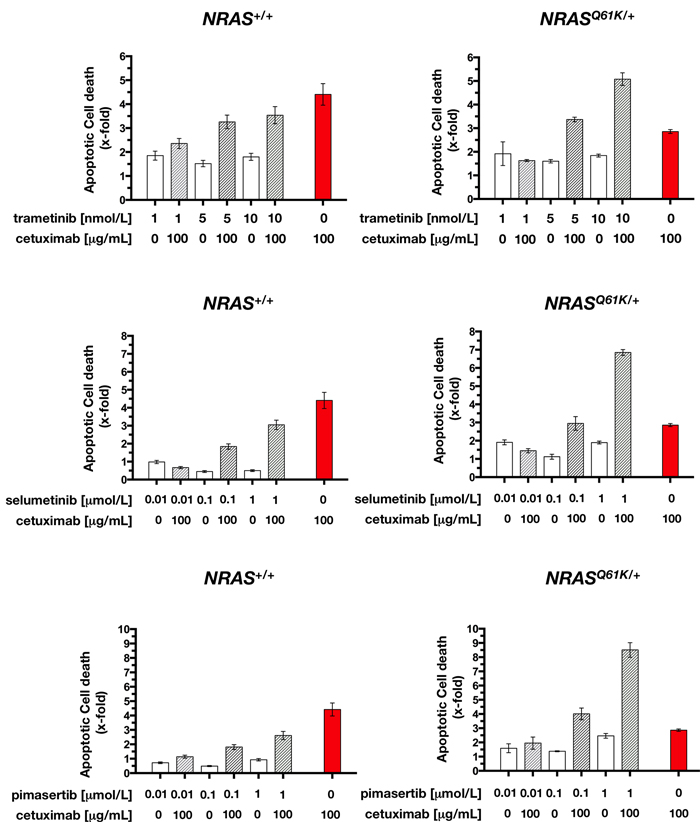 Cetuximab augments MEK1/2 inhibitor-induced apoptotic cell death in