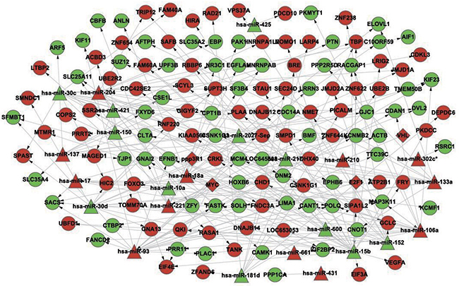 The constructed gene-regulatory network linked to differentiation syndrome.