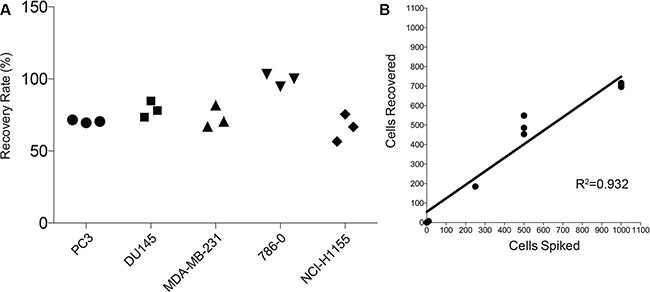 Efficiency of the protocol using cell spiking experiments.