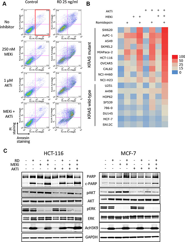 Romidepsin in combination with a MEK and an AKT inhibitor is selectively toxic to cells harboring mutant Ras.