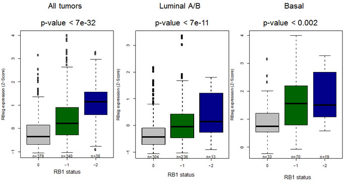 Association between RBsig expression levels and genetic RB1 status.