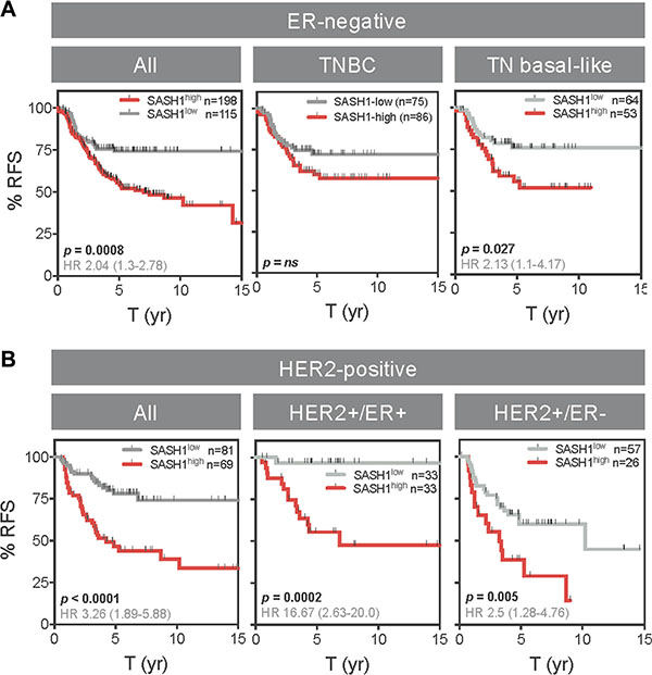 High SASH1 expression is an independent marker of poor prognosis in ER-negative and HER2-positive breast cancer subtypes.