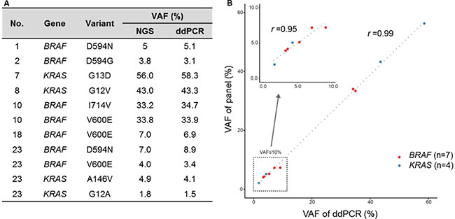 High correlation of VAF from cancer panel and digital droplet PCR.