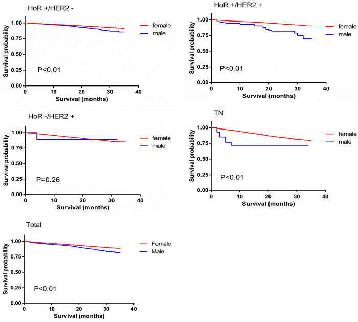 Overall survival curves of male matched with female breast cancer patients.