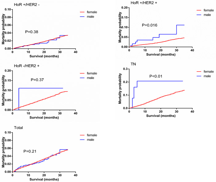 Breast-cancer-specific mortality curves of male matched with female breast cancer patients.