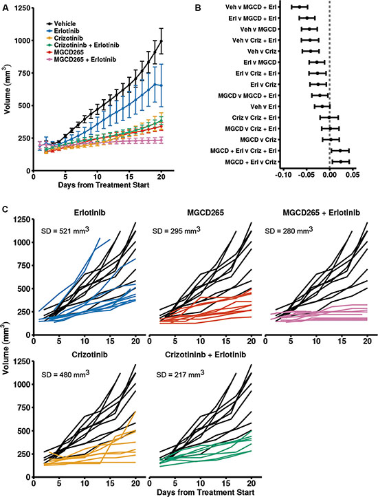 Combined MET and EGFR inhibition is more effective than monotherapy in TNBC PDX models.