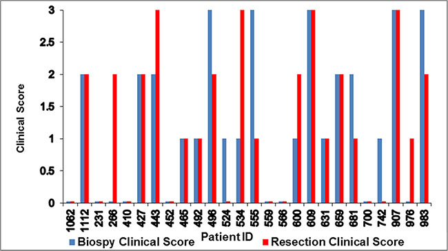 Variations in paired biopsy and resection clinical scores for 26 patients.