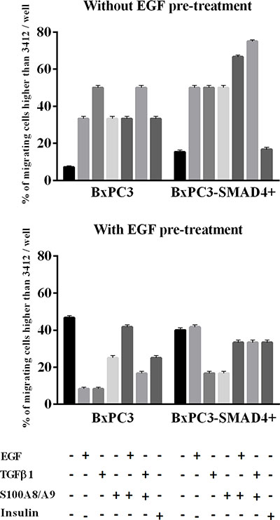 Matrigel invasion obtained from pancreatic cancer cells expressing (BxPC3-SMAD4+) or not (BxPC3) SMAD4 and subjected to insulin, EGF, TGFβ1 and S100A8/A9 stimulation in the absence or in the presence of chronic EGF exposure.