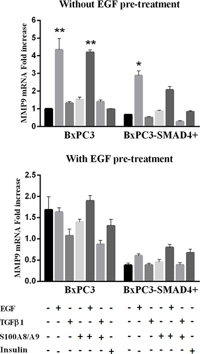 Matrix metalloproteinase 9 (MMP9) mRNA relative expression obtained from pancreatic cancer cells expressing (BxPC3-SMAD4+) or not (BxPC3) SMAD4 and subjected to insulin, EGF, TGFβ1 and S100A8/A9 stimulation in the absence or in the presence of chronic EGF exposure.