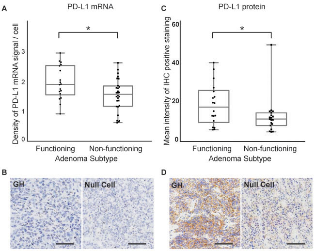 PD-L1 mRNA and protein expression in functioning and non-functioning pituitary tumors.