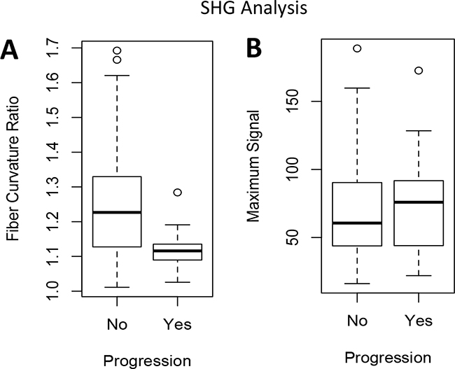 SHG imaging quantification comparing patients with progression to muscle-invasive disease versus those with no progression.